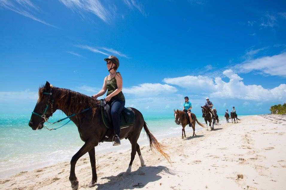 Provo Ponies - Triton Luxury Villa (Turks and Caicos)