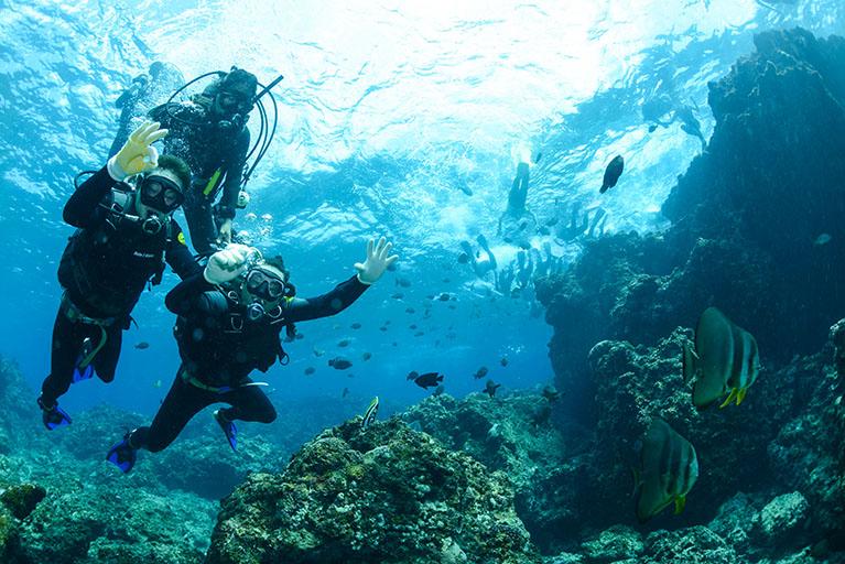Triton scuba diving 2.1